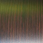 Pellicola effetto legno wengè per superfici planari